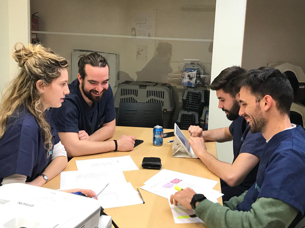 Pratdesaba Veterinaris Osona - Reunió de Veterinaris compartint casos