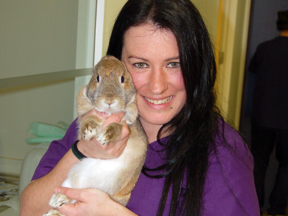 Pratdesaba Veterinaris Osona - Sandra amb un conill apunt de fer una radiografia